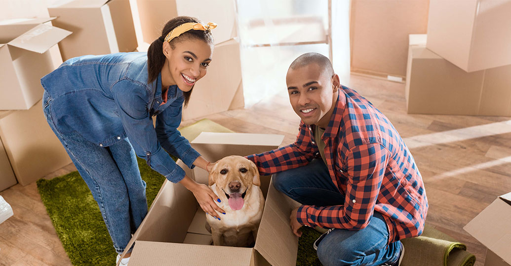 Couple having fun with dog while moving