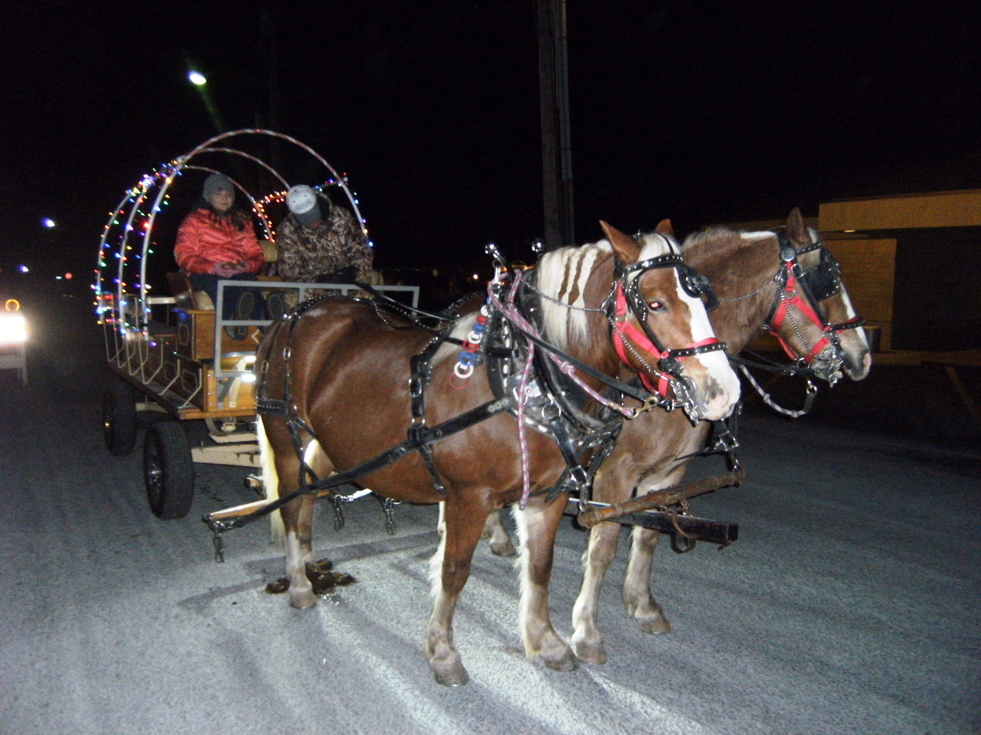 Horse drawn carrage rides provided by Paul Kuberski and Nelson Rule at the Murphy-Wall State Bank's 2017 Old Fashioned Christmas event